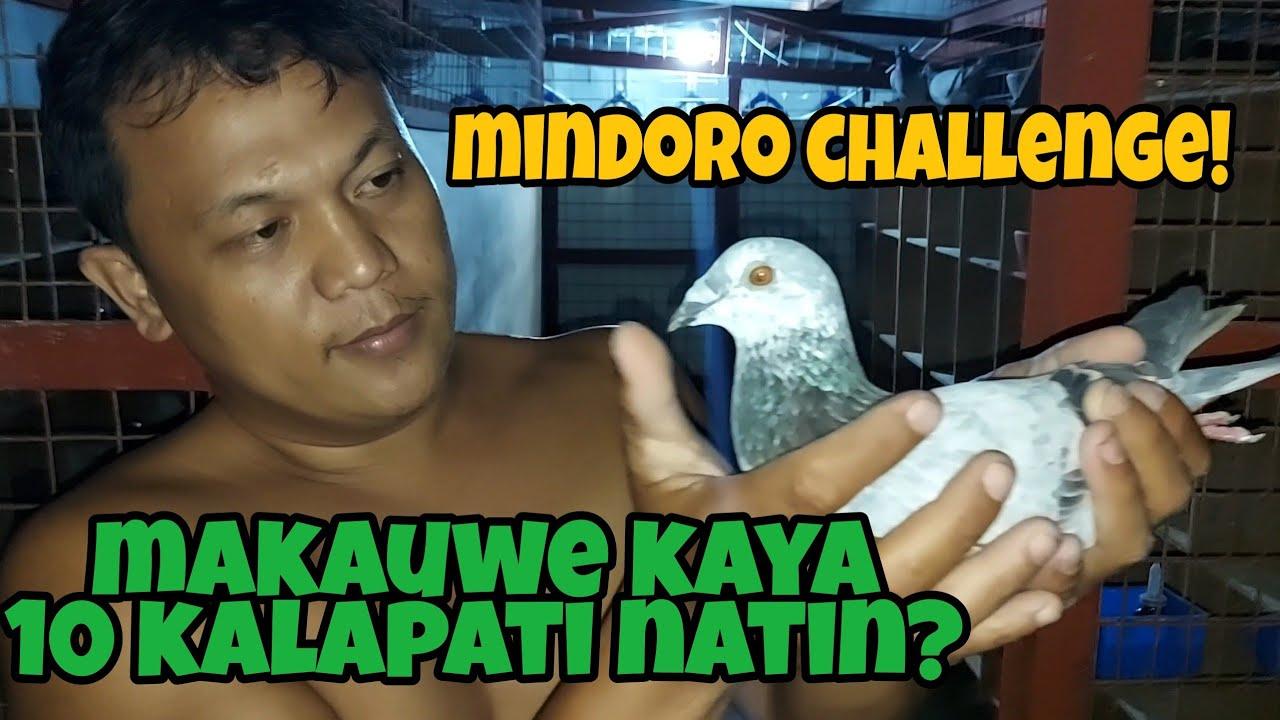 Nilaban natin 10 kalapati sa cswrpc motor cup open race mindoro challenge!
