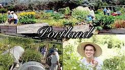 Ecotipping Point - Urban Community Gardening (New York City)
