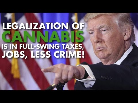 America Finally Liberated: Marijuana Legalization Inevitable