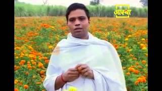 Ayurvedic use African Marigold (Genda) Part 1 (2)