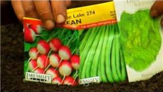 Vegetable Gardening : How To Plant A Vegetable Garden For Children Step By Step
