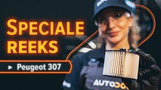 Onderhoud Peugeot 307 SW - videohandleidingen
