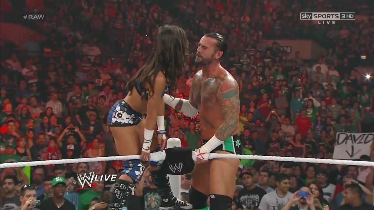 Image result for cm punk and aj lee wwe