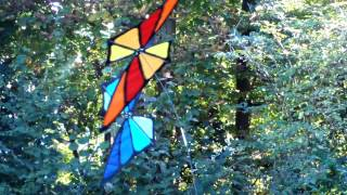 Butterfly Spinner (Premier Kites), Monarch, Rainbow, Blue, designed by Rudiger Gröning