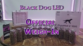 Black Dog LED Official PhytoMAX-2 Weigh-in
