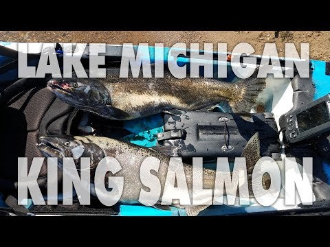 FIRST EVER King Salmon Catch From A Small Kayak On Lake Michigan Near Waukegan, IL