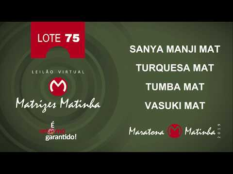 LOTE 75 Matrizes Matinha 2019