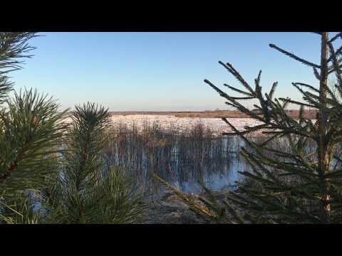 Ice drift in Arkhangelsk region