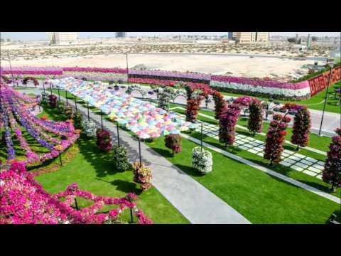 Dubai Miracle Garden Youtube