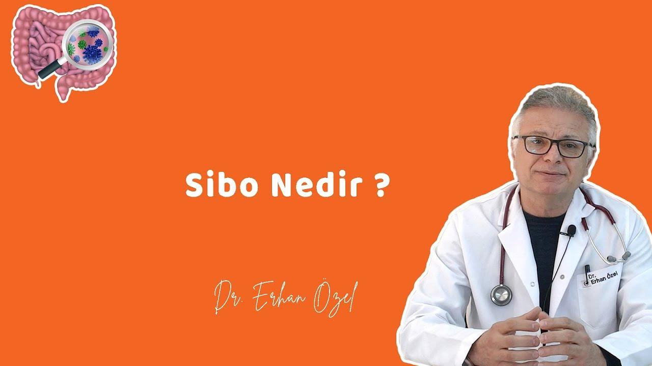 Download SİBO NEDİR ? ( Ne Yesem Şişiyorum ) -  Dr. Erhan Özel