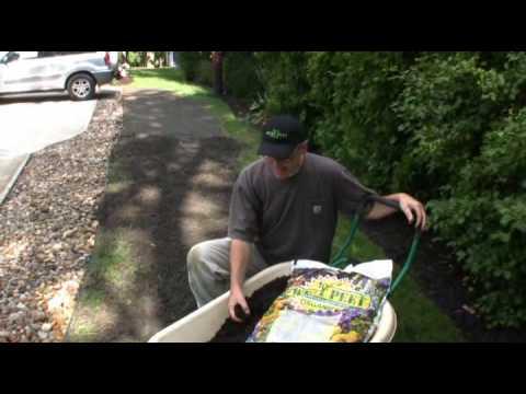 Sweet Peet Spot Seeding Demo Youtube