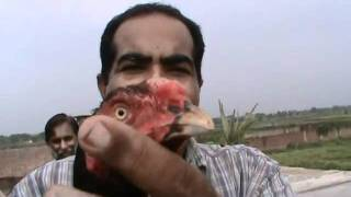 USTAD BROSLI in sialkot with usted rana safdar.