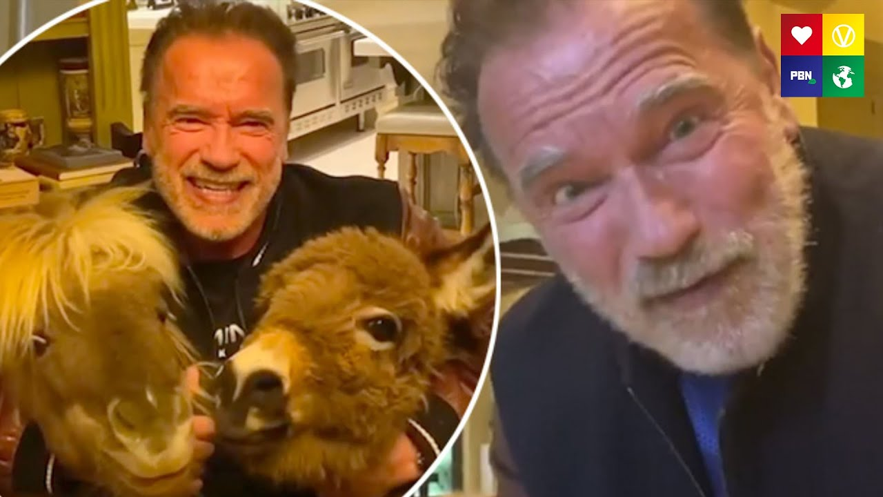 CORONAVIRUS: Arnold Schwarzenegger's Response