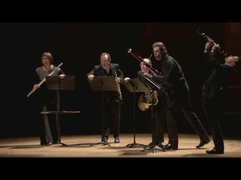Le Quintette à vents - Ensemble intercontemporain