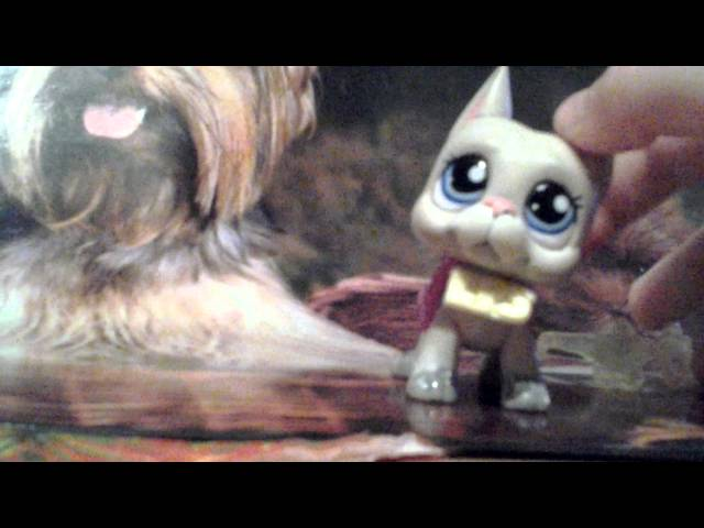 LPS Music Video - Swag It Out by LPS DogaTV