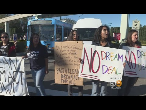 Senate Turns Its Attention Toward 'Dreamers'