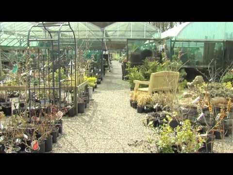 Crieff Visitor Centre Video