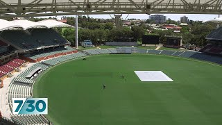 Adelaide Oval's head curator reveals his secrets | 7.30