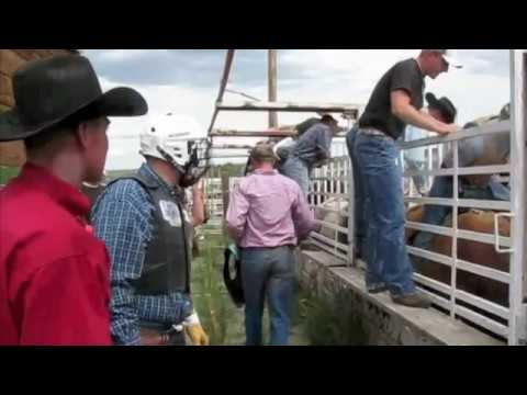 Kirk's Bull Ride