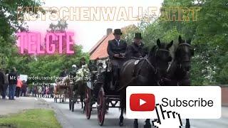 Pferde mit Kutschen auf der Straße - Pferdekutsche fahren