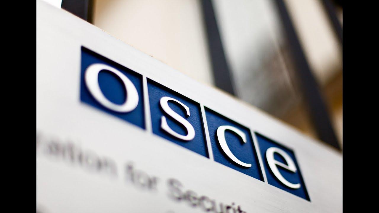 ОБСЕ - миротворцы или пособники террористов?