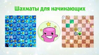 Шахматы для начинающих Ходы фигур