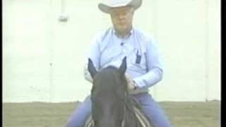 Training Tips: Halting Your Horse and Conclusion
