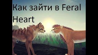 Как зайти в Feral Heart Если выдаёт ошибку