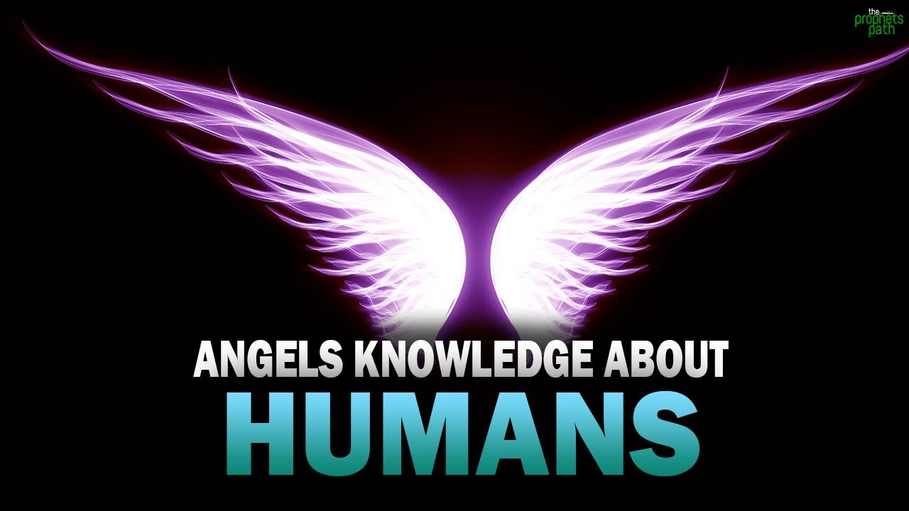 THE ANGEL'S SPECIAL KNOWLEDGE ABOUT HUMANS