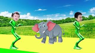 учить животных для малышей - животные для детей - видео развивающее #31