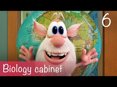 Booba - Biology cabinet - Episode 6 - Cartoon for kids