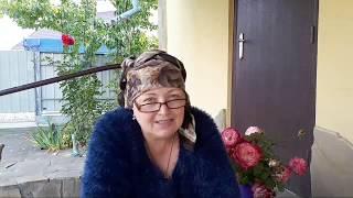 Осенние Хлопоты Дачников