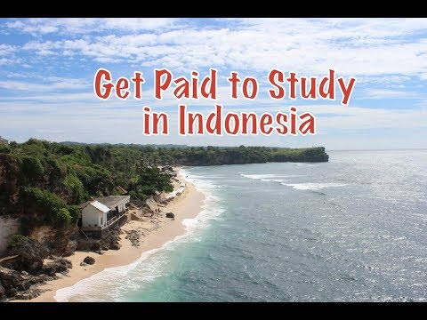 Get Paid to Study in Indonesia
