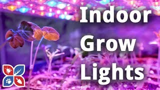 Do My Own Gardening - Indoor Grow Lights