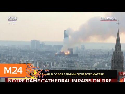 В Париже загорелся Нотр-Дам-де-Пари - Москва 24