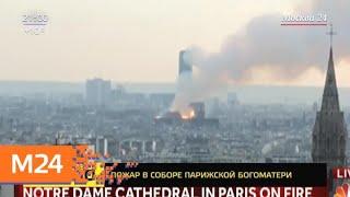 Смотреть видео В Париже загорелся Нотр-Дам-де-Пари - Москва 24 онлайн