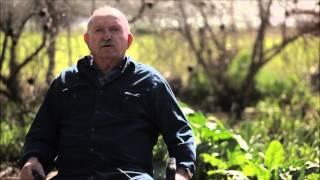 פינת הפלברה - זלמן אברמוב