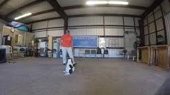 Prodogz Dog Training AKC Obedience: Teaching utility hand signals.