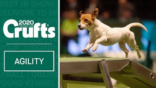 Agility | Crufts Team Small Final  Part One | Crufts 2020