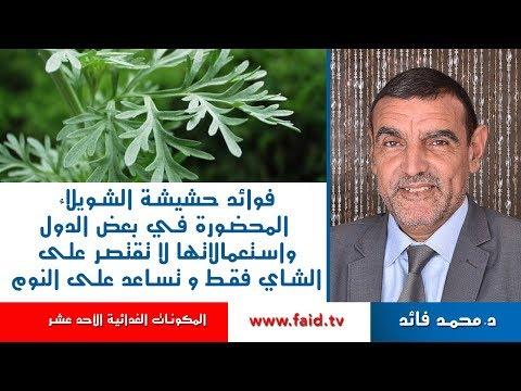 حشيشة الشويلاء - الشيبة | الدكتور محمد فائد