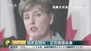 [中国财经报道]加农业部长:正在调查此事|CCTV财经