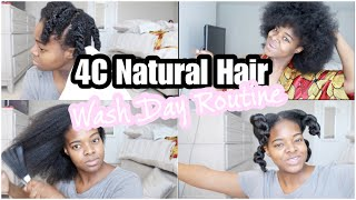 Quick & Simple Wash Day Routine 4C Natural Hair | Start to Finish