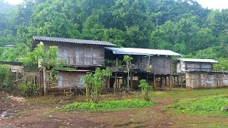 Homestay at Lahu Village In Northern Thailand