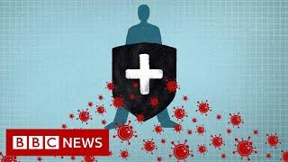 Coronavirus: Immunity explained - BBC News