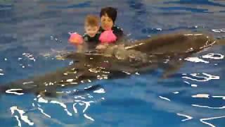 Дельфинотерапия!!! Москвариум
