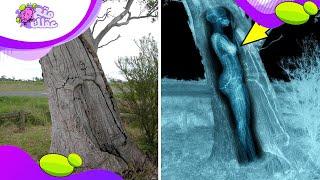 أكثر 10 اكتشافات مُرعبة علي وجه الأرض !