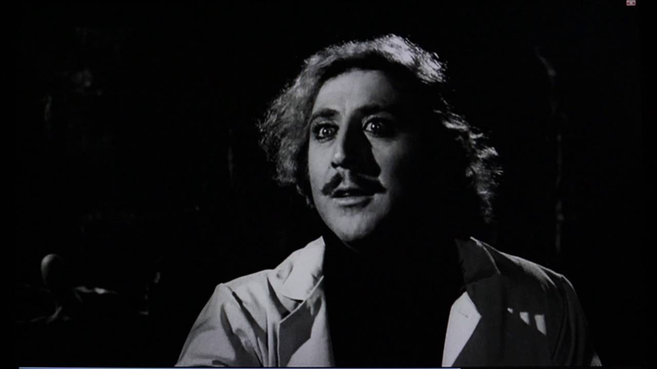 Young Frankenstein Hello Handsome Youtube