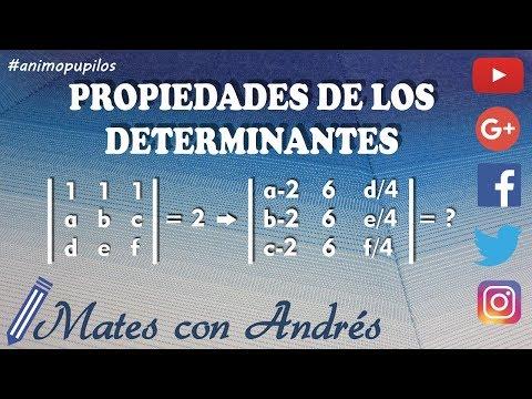 Propiedades de los determinantes de matrices 03