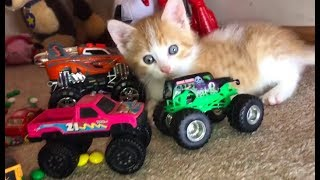 Learn Colors and Counting for Kids with Toy Car Educational Video!