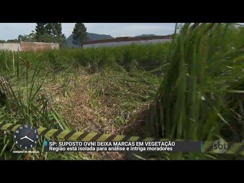 Marcas misteriosas em terreno intrigam moradores de cidade paulista | Primeiro Impacto (27/10/17)